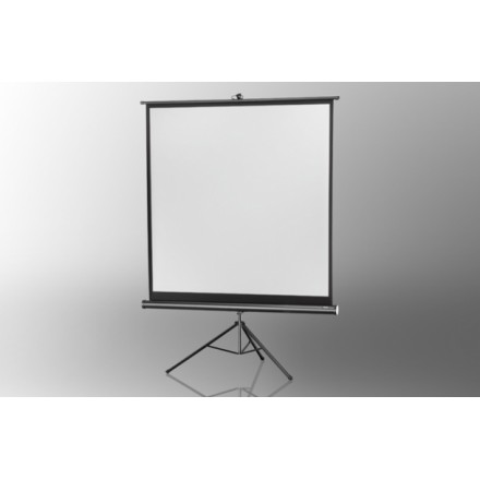Projection screen on foot ceiling Economy 158 x 158 cm