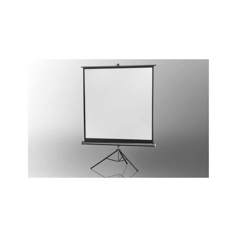 Projection screen on foot ceiling Economy 184 x 184 cm - image 12042