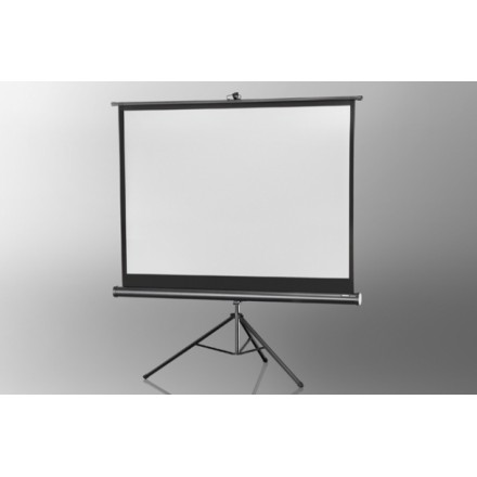 Projection screen on foot ceiling Economy 244 x 183 cm