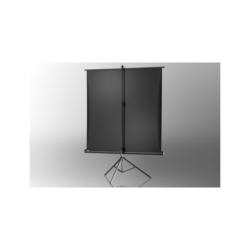Projection screen on foot ceiling Economy 244 x 183 cm - image 12075