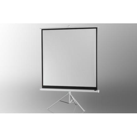 Ecran de projection sur pied celexon Economy 244 x 244 cm- White Edition
