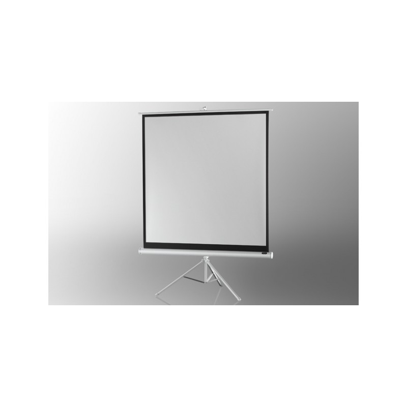 Projection screen on foot ceiling Economy 244 x 244 cm - White Edition - image 12083