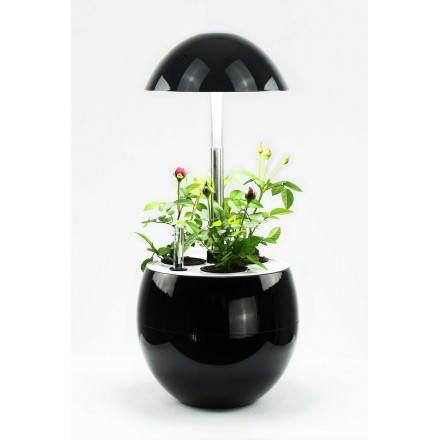 Gärtner der Hydrokultur für automatische indoor Kultur APFELFRUCHT (klein, schwarz)