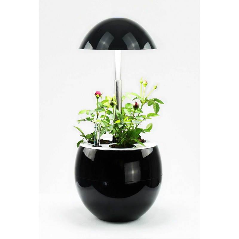 Giardiniere della coltura idroponica per la cultura interna automatica POME (piccolo, nero)