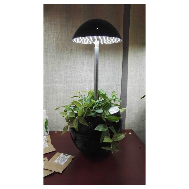 Giardiniere della coltura idroponica per la cultura interna automatica POME (piccolo, nero) - image 23856