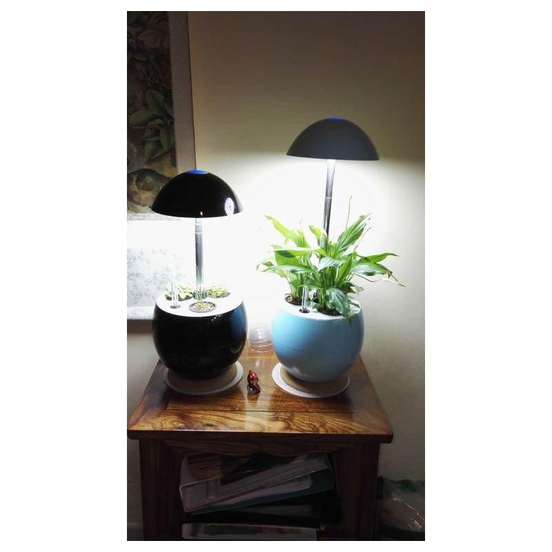 Giardiniere della coltura idroponica per la cultura interna automatica POME (piccolo, nero) - image 23860