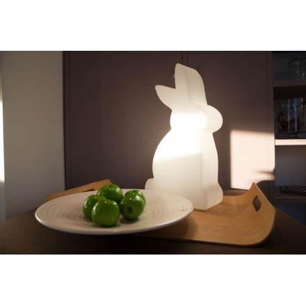 Figura chiara fuori coniglio domestico (bianco, multicolor LED H 50 cm)
