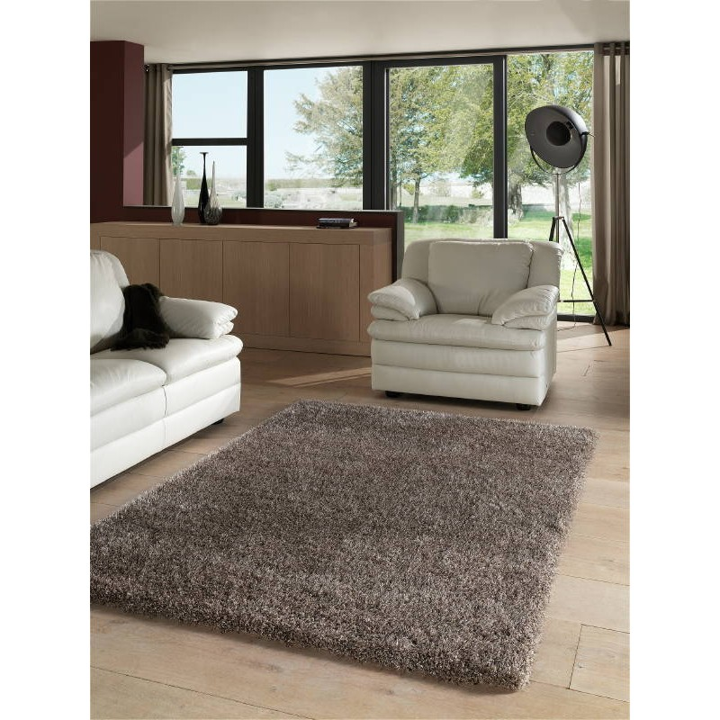 Tapis de salon shaggy luxe couleurs ombr es 133x190 cm for Tapis salon clair