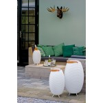 Lamp LED bucket champagne pregnant speaker bluetooth KOODUU synergy S 35 (white)